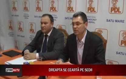 Laura Bota acuzată de prostituție politică de liderii PDL Satu Mare