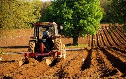 Facilitati fiscale pentru agricultorii cu recolte distruse