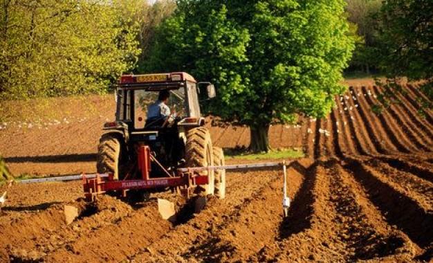 Subventii in agricultura