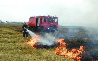 Campanie agricolă fără incendii: măsuri de prevenire în campania de recoltare a cerealelor