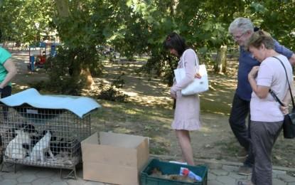 Adopţii de animale în Grădina Romei